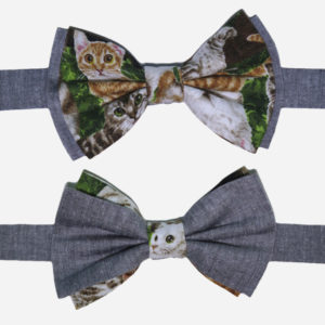 Everyone is Gay Cat bowties