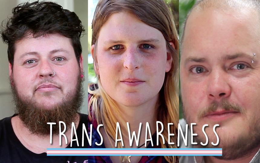 Transsexual facial videos